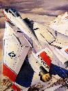 """F-14 TOMCAT D """"SUPER TOMCAT"""""""